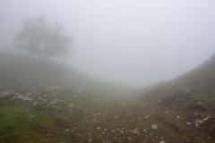 Montée dans le brouillard. Le sommet sera difficile à trouver...