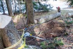 Descendre et stabiliser le fût pour creuser la fontaine